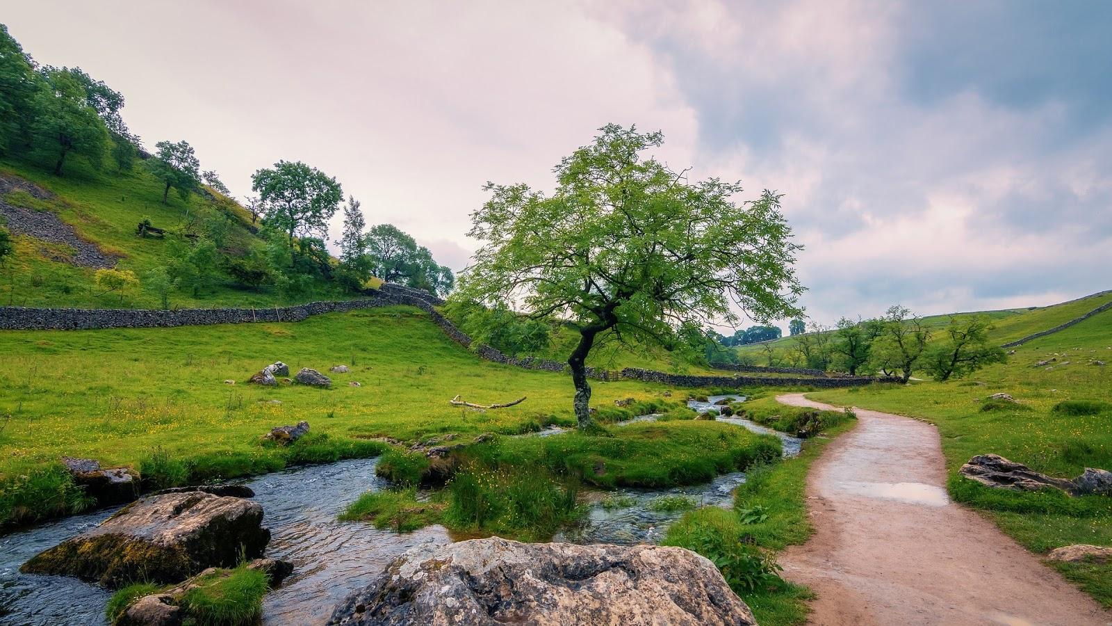 75 gambar foto lukisan pemandangan alam indah