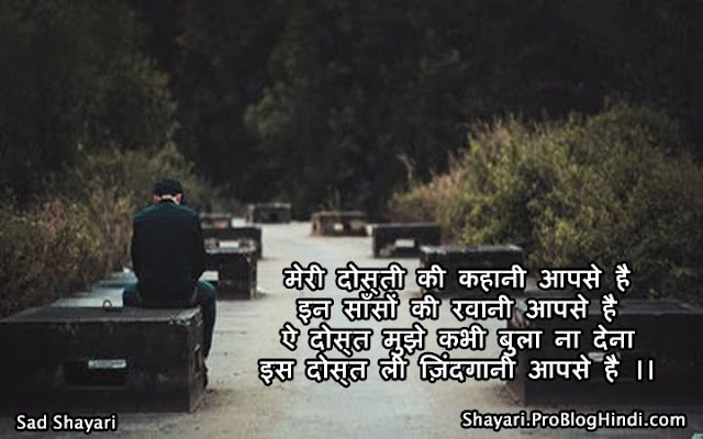 sad and love shayari