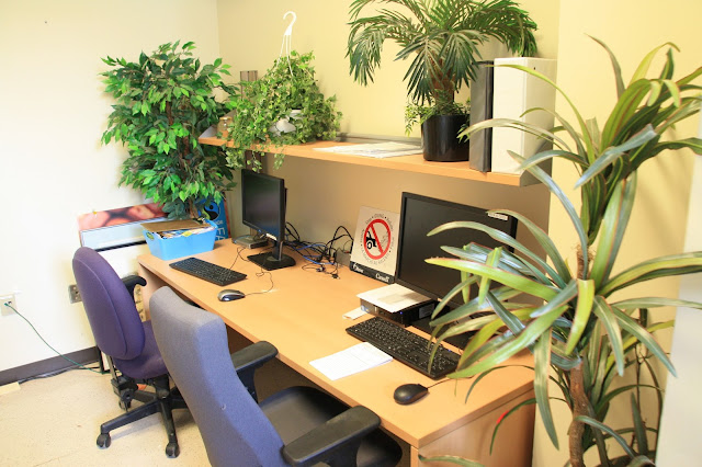 new office space, office of campus sustainability