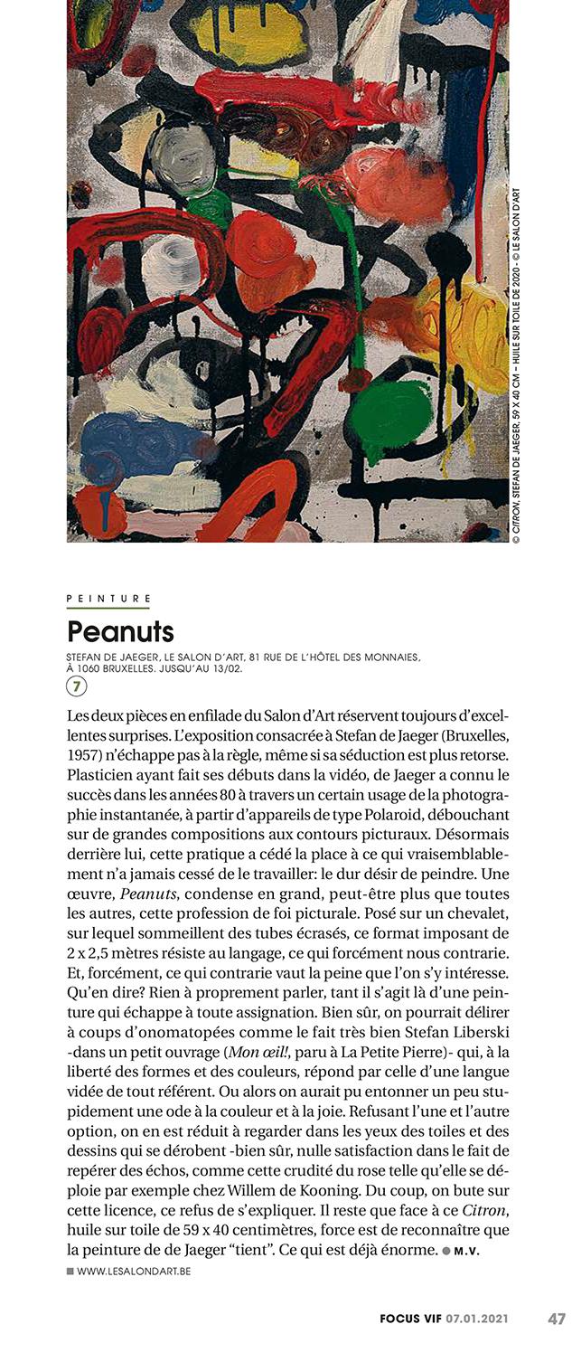 article de michel verlinden à propos de l'exposition de stefan de jaeger au salon d'art focus vif du 7 janvier 2021
