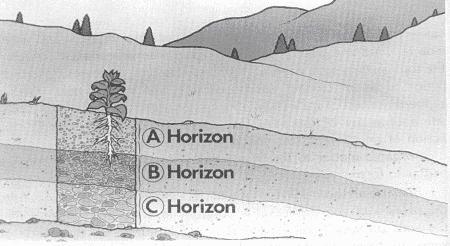 Gambar Penampang melintang tanah