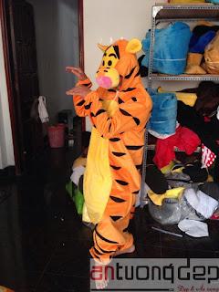 cho thuê trang phục con hổ