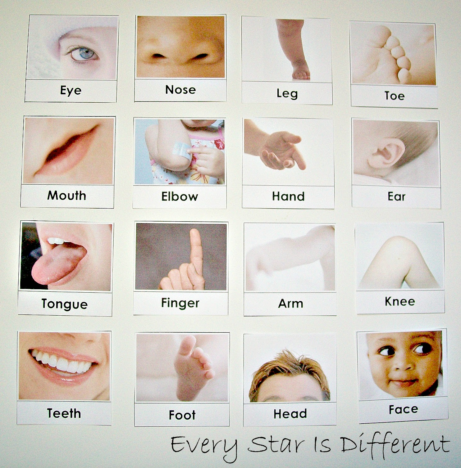 Body Parts Worksheet For Toddlers
