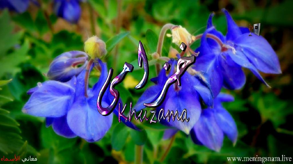 معنى اسم خزامى وصفات حاملة هذا الاسم Khuzama
