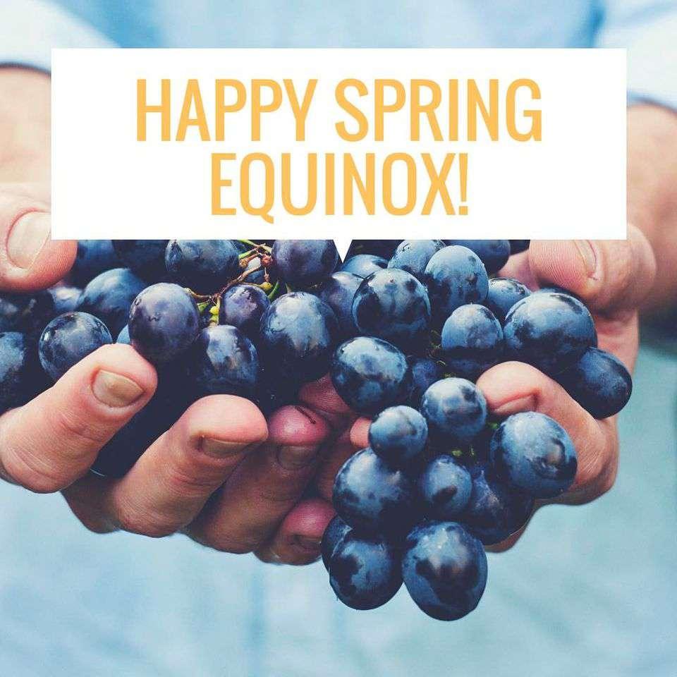 Spring Equinox Wishes Unique Image
