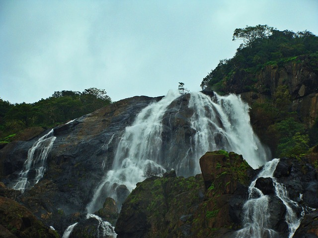 While you visit Colva beach, you can also explore Dudhsagar waterfalls. It is near to Colva beach. It is one of the popular waterfalls that is also named as Sea of Milk.