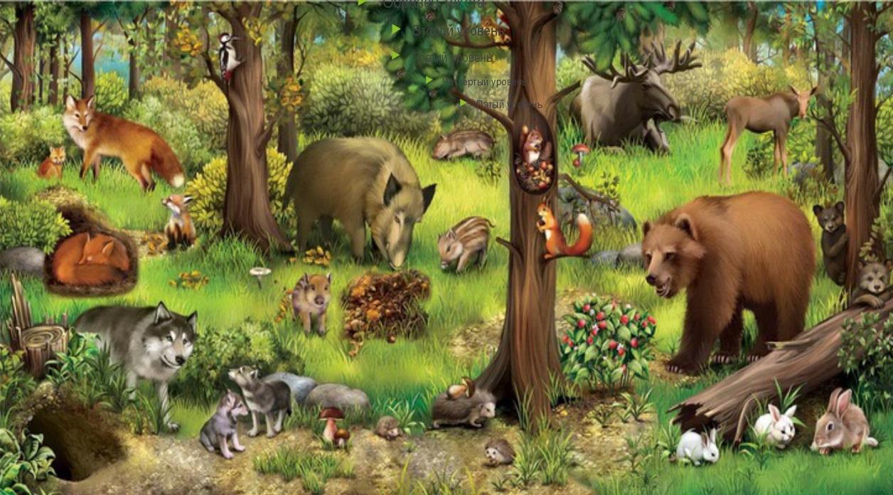 Звери в лесу картинка для детей