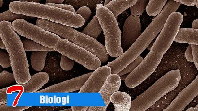Penafsiran Yang Berlebihan Terhadap Kata Biologi