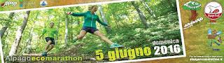 alpagoecomarathon
