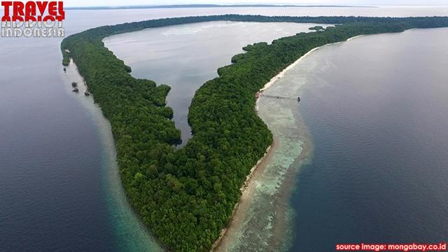 Derawan islands, East Kalimantan, Kakaban Island, jellyfish in Lake Kakaban, Maratua Island, Lake Haji Buang, Panjang Island, Sangalaki Island, Sangalaki island you can see the turtles,