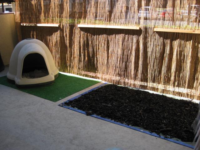 The Banana Hammok Dog Potty Patch Idea For An Apartment Patio
