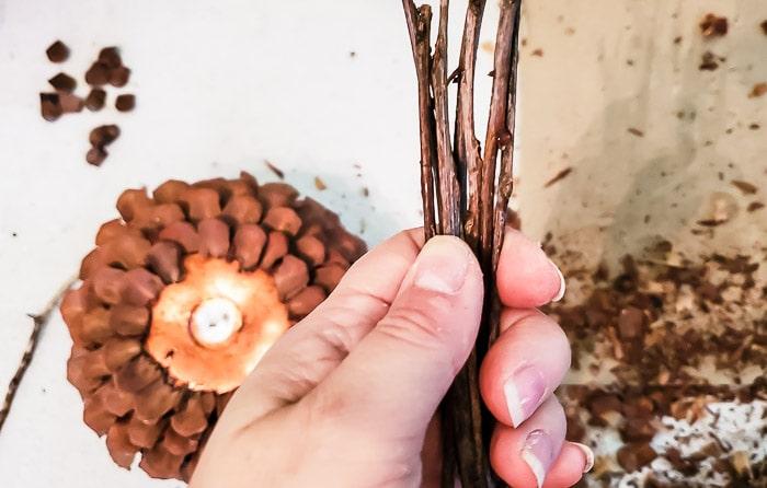 stick bundle for pinecone pumpkin stem