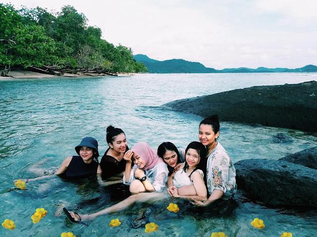 sea turtle island located in jambi