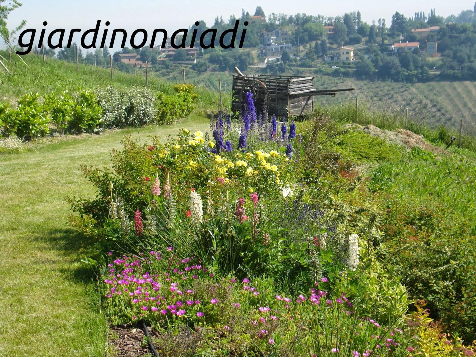 Il giardino delle naiadi lo stile il giardino di campagna for Esempi di giardini
