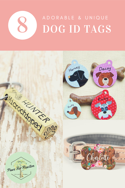 8 adorable dog identification tags for National Pet Preparedness Month