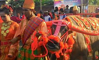 Festival Taliwang