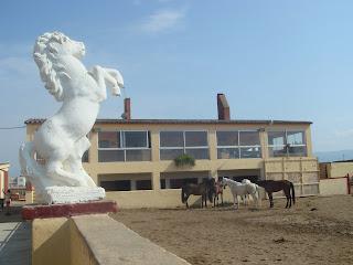 Alaves Pot, Espanja, katalonia, ratsastusmatka