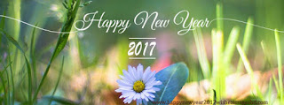 Nature happy new year 2017 facebook cover