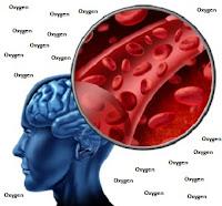 brain needs oxygen