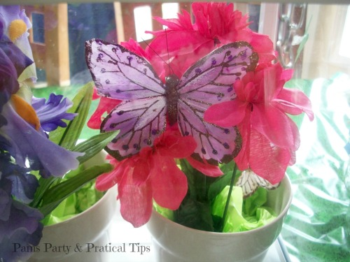 Butterfly House for Butterfly Party at Pams Party ad Practical Tips