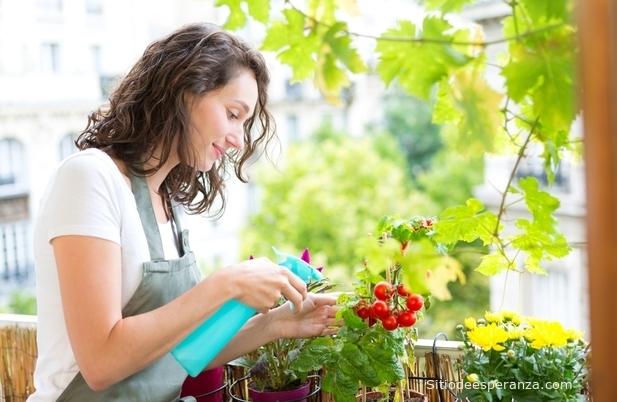 Mujer regando planta en casa