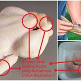 Makan 5 Bagian Ayam Ini Sama Saja Seperti Menelan Racun