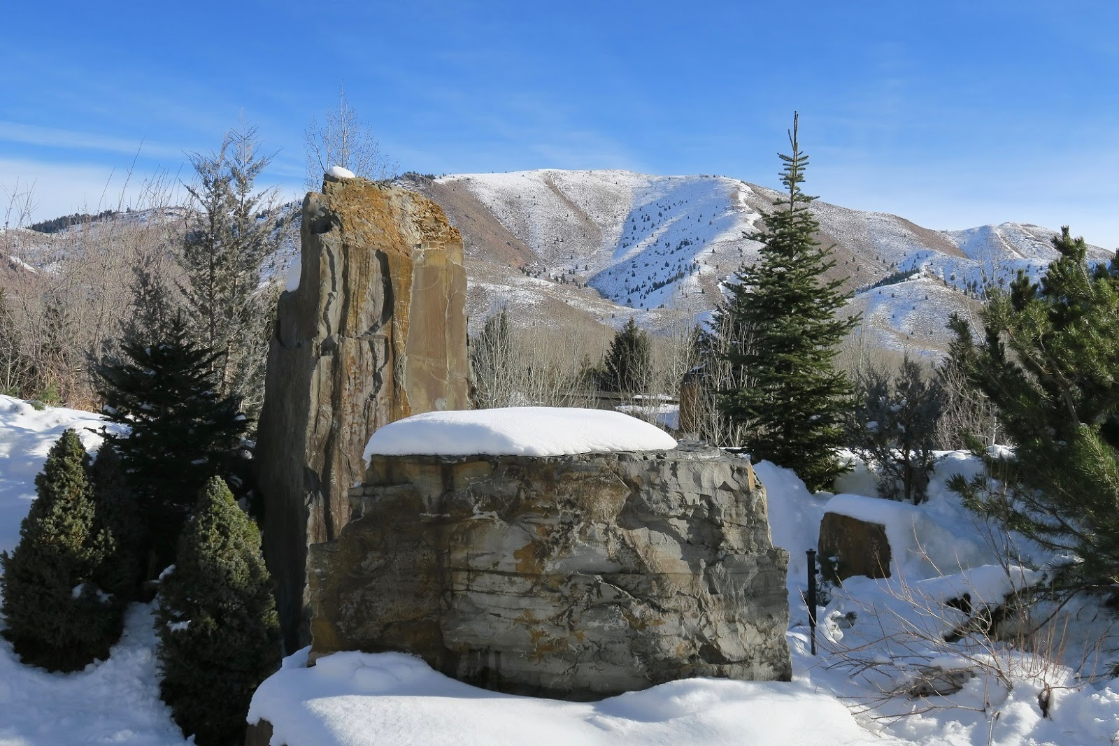 The Sawtooth Botanical Garden Is Located South Of Ketchum, Idaho On Highway  75. I Had Read That The Dalai Lama Visited This Part Of Idaho In September  Of ...