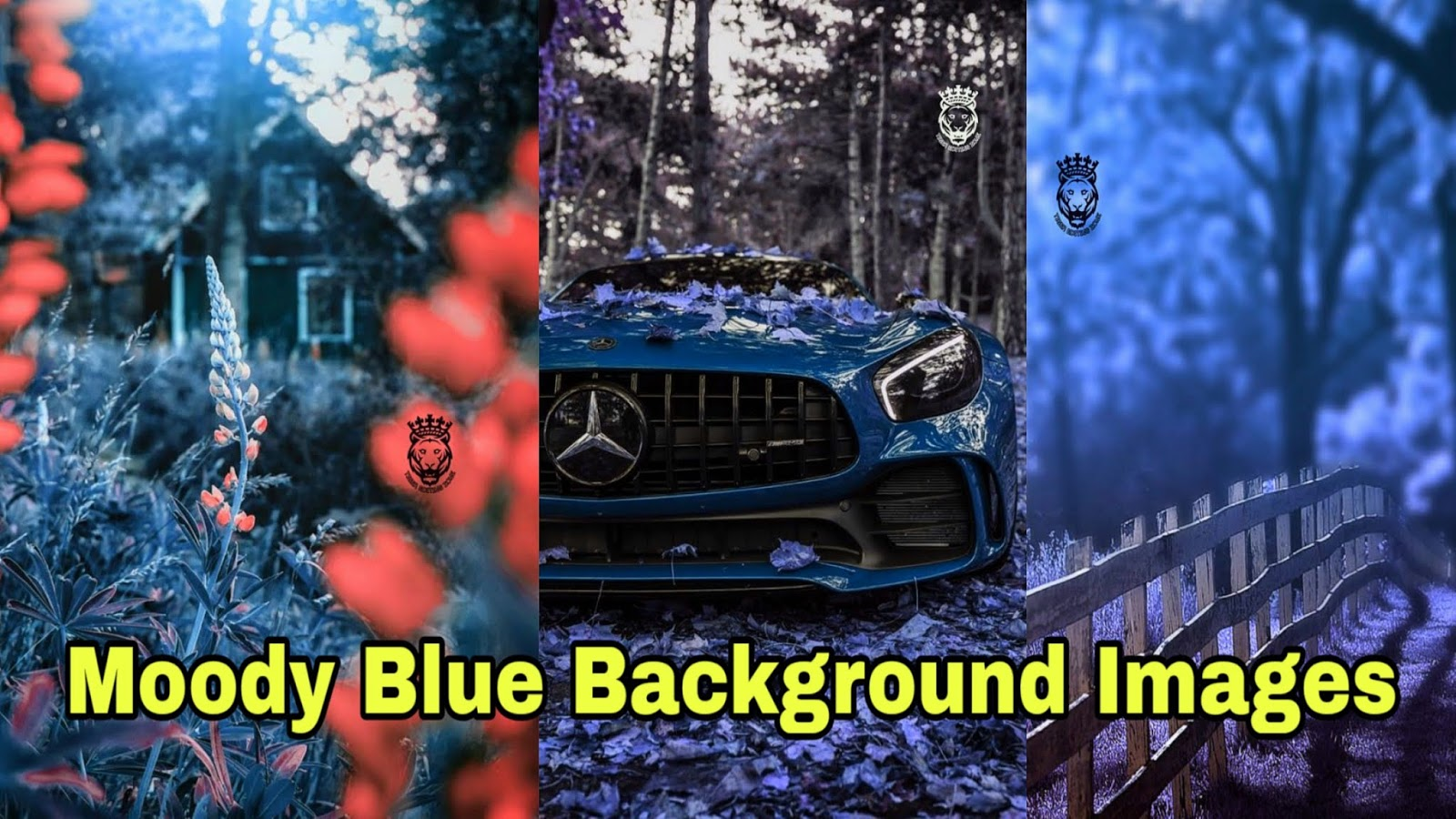 Blue Background HD for Editing | Moody Blue Photo Editing Background Images