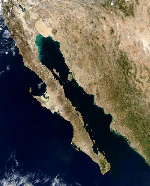 zatoka kalifornijska