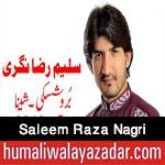 http://www.humaliwalayazadar.com/2016/04/saleem-raza-nagri-manqabat-2016.html