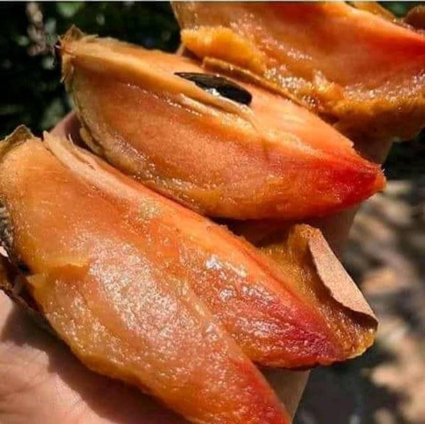 Bibit tanaman buah sawo mentimun okulasi cepat berbuah Jawa Barat