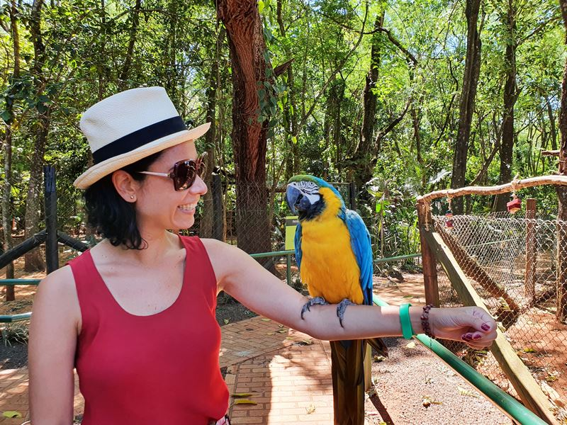 Onde ficar em Foz do Iguaçu centro ou estrada
