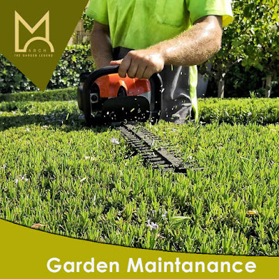 garden maintanance