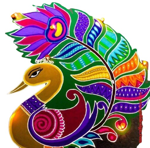 many colour design of peacock for the competition