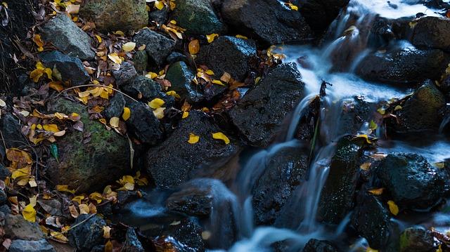 El agua en su estado natural