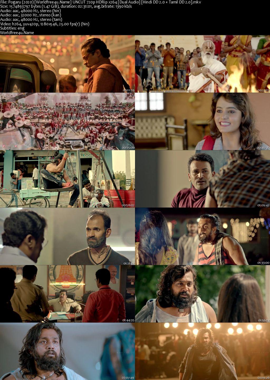 Pogaru 2021 Hindi Dubbed HDRip 720p