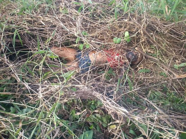 Polícia confirma que corpo encontrado em Ribeirão é mesmo da menina sequestrada