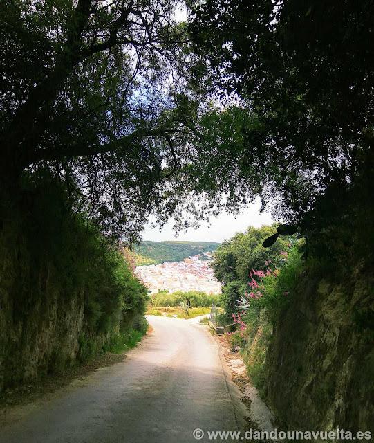 Llegando a Alcalá del Valle en la ruta España en bici