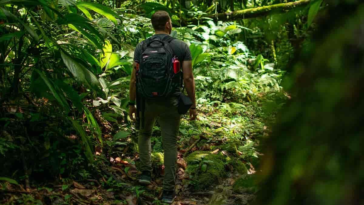 Sete benefícios do ecoturismo