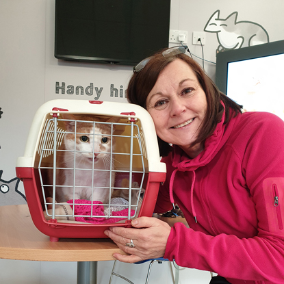 brunette woman in pink jumper with cat carrier containing ginger-and-white cat