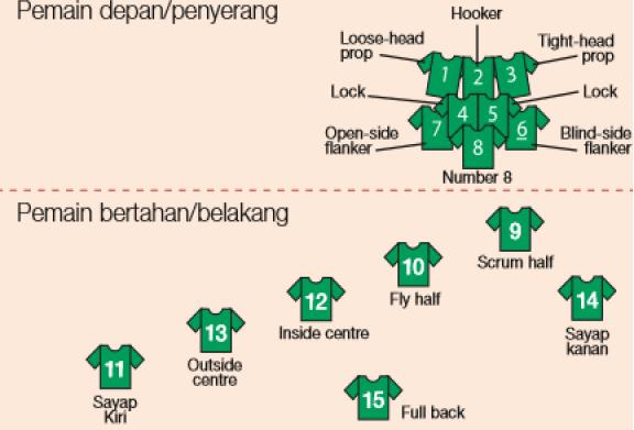 10 Posisi Pemain Rugby dan Tugasnya