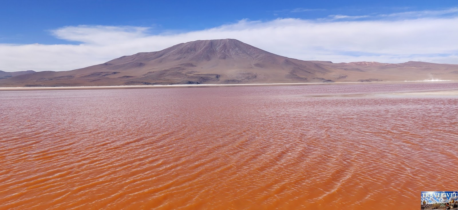 Bolivie Bolivia Laguna colorada