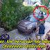 """Papagaio com voz de mulher gritando """"me deixa sair"""" provoca operação policial"""
