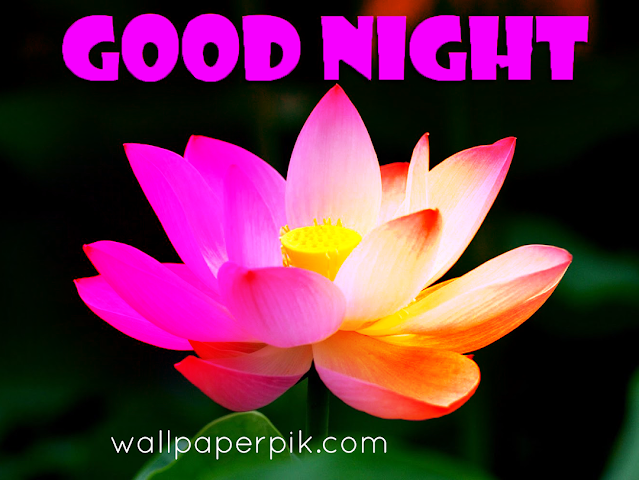 good night images free download for whatsap  facebook