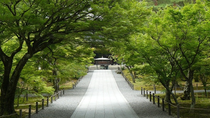 A Glimpse of Kyoto's Nanzen-ji Zen Garden