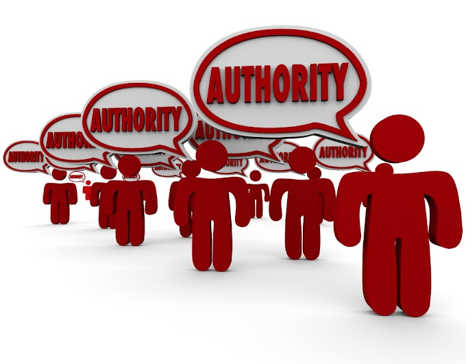 How Does the Authority of Your Brand Affect Search Results?