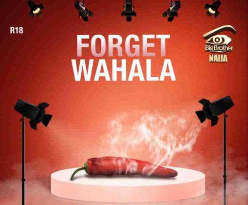 FINALLY!  Big Brother Naija Season 4 Set To Kick Off On The 30th Of June 2019