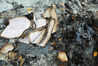 Burned Books