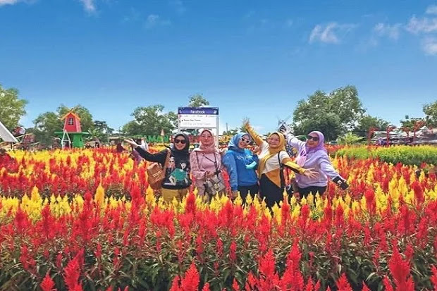 Rekomendasi Tempat Wisata Taman Bunga