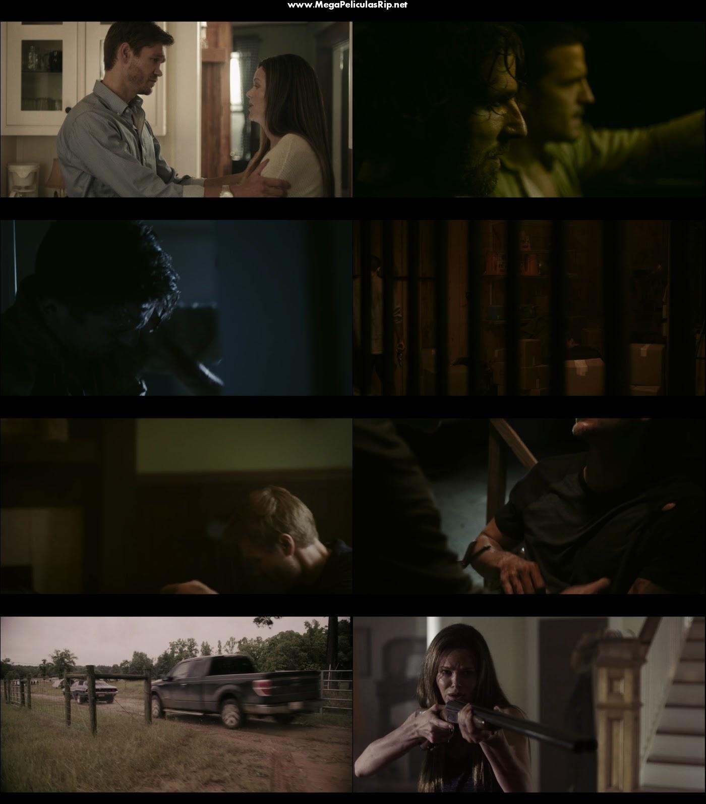 Survive The Night 1080p Latino